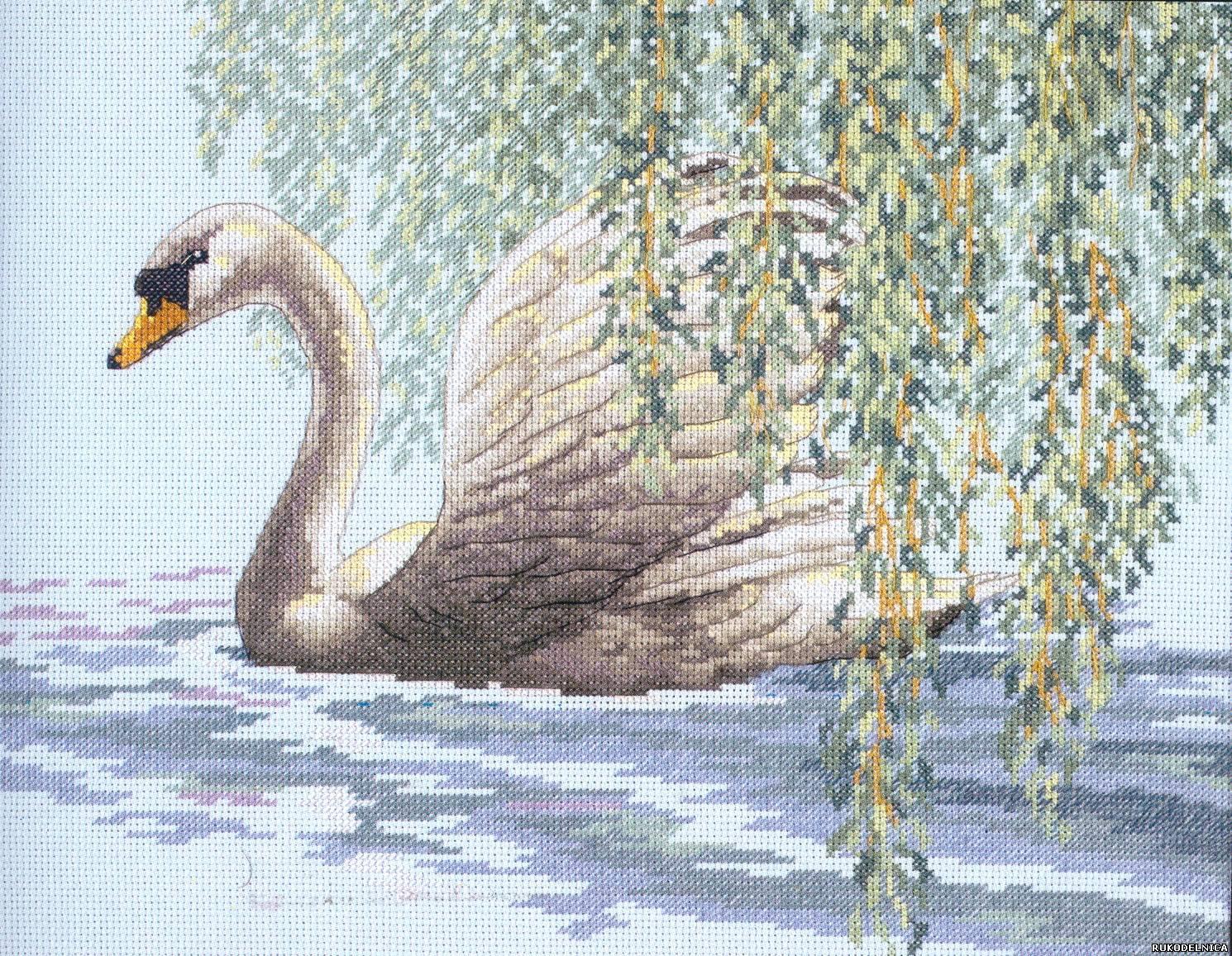 Вышивка гладью лебедя